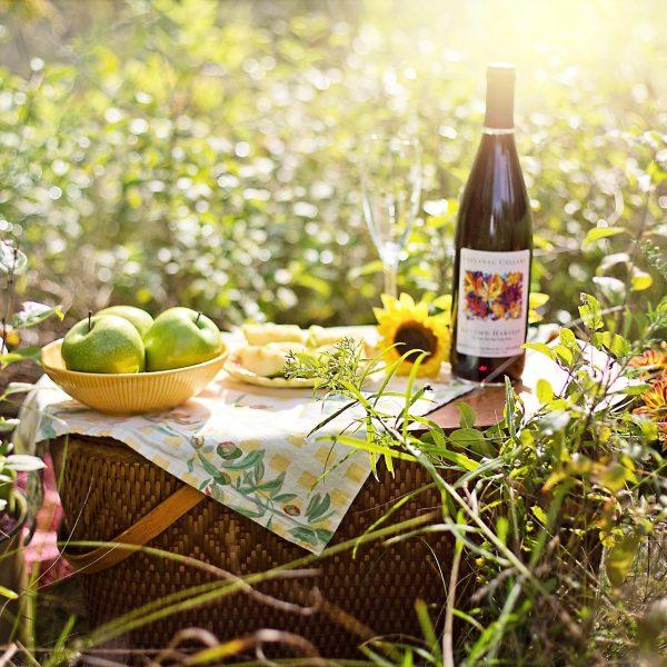 poznopoletni piknik